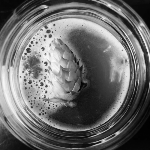 hop in glass BW
